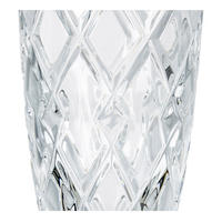 Gracie Champagne Flutes Set Of Two Clear