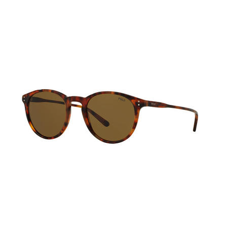 Havana Round Phantos Sunglasses Brown