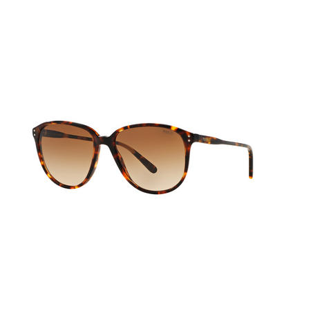 Havana Brown Lens Phantos Sunglasses  Brown