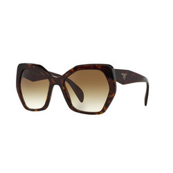 Havana Sunglasses Brown