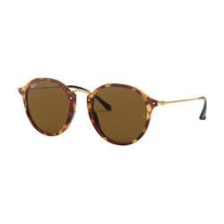 0RB2447 Round Sunglasses