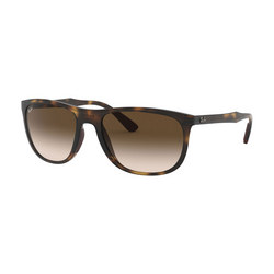 0RB4291 Square Sunglasses