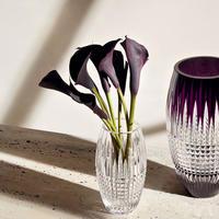 Lismore Diamond Encore Vase 20cm Clear