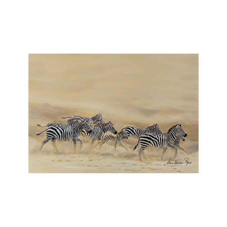 Dust and Stripes Single Placemats