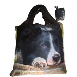 Collie Chill Out Foldaway Bag  Multicolour