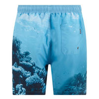 Shark Swim Shorts Blue