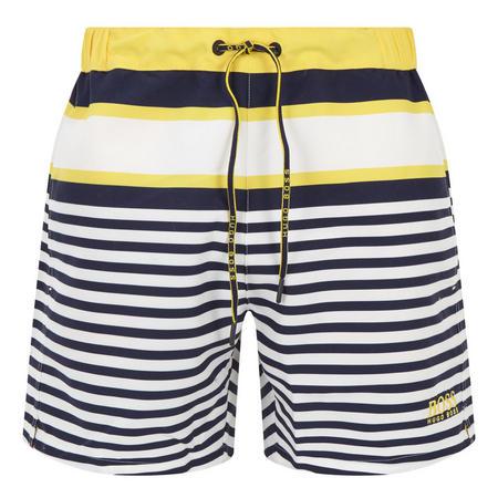 Striped Swim Shorts Multicolour