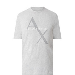 Diagonal Logo T-Shirt Grey