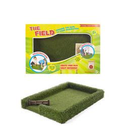 The Field Multicolour