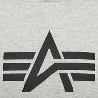 Basic Logo Print Hoody Grey