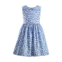 Sleeveless Flower Print Dress Blue