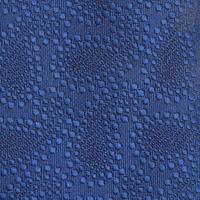 Textured Paisley Tie Blue