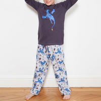 Boys Dragon Pyjamas Grey