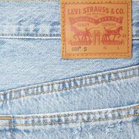 501 Lovefool Skinny Jeans Blue