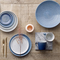 Studio Blue Flint Coupe Dinner Plate