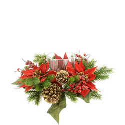 Majestic Poinsettia With Holder 35cm