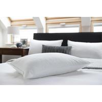 Superior Fibre Pillow