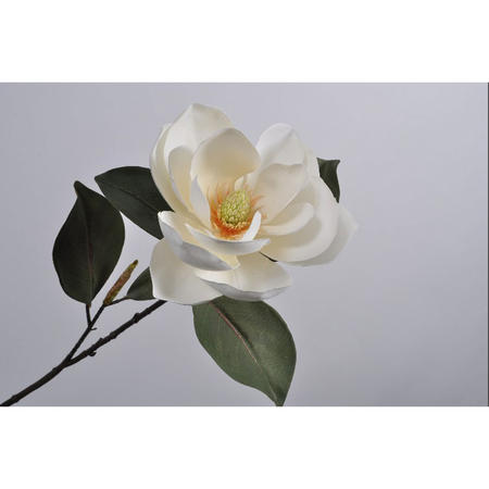Magnolia spray flower