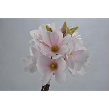 Magnolia flower bouquet
