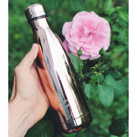 Stainless Steel Water Bottle Chrome