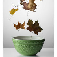 Forest Mixing Bowl Cream 21Cm