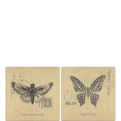 Set of 4 Butterfly Place Mats