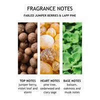 Fabled Juniper Berries & Lapp Pine Single Wick Candle
