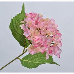 Hydrangea Stem Pink