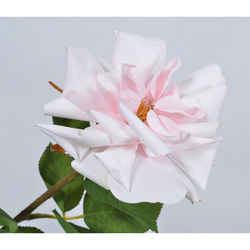 Rose Stem Pink Light