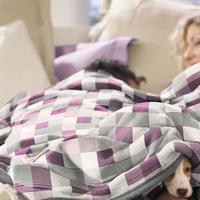 Blanket Cotton Check Plum