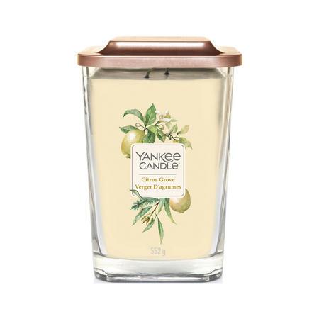 Citrus Grove Elevate  Candle Large Jar