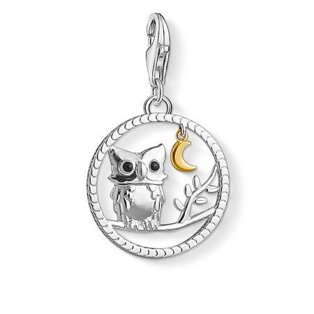 Night Owl Charm Silver