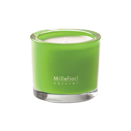 Green Fig & Iris Natural Scented Candle
