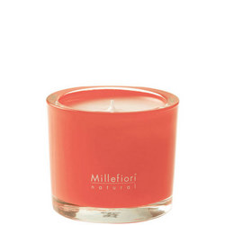 Almond Blush Natural Scented Candle