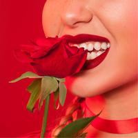 Matte Velvetines Lip Colour