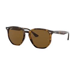 0RB4306 Irregular Sunglasses