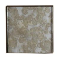 Fossil Organic Mini Tray 20383