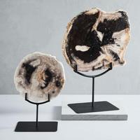 Petrified Wood Object on Stand Large