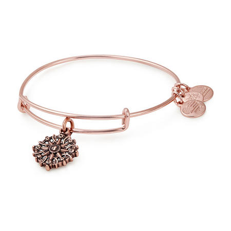 Compass III Shiney Rose Bangle