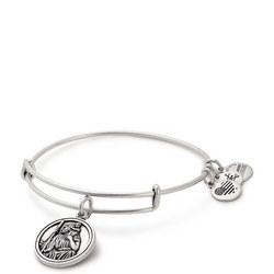 1f3075bbe Alex and Ani   Bracelets, Necklaces, Charms, Rings & Pendants   Arnotts