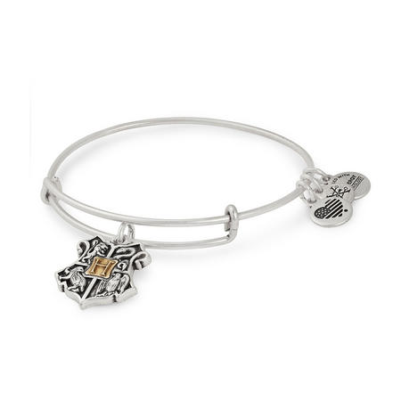 Harry Potter Hogwarts Two Tone Charm Bangle Silver