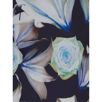 Jersey Trim Rose & Lily Print Chiffon Top
