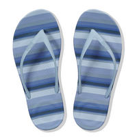 Iqushion Stripey Blue