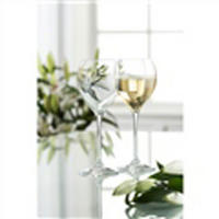 Clarity Set of 4 White Wine Glasses
