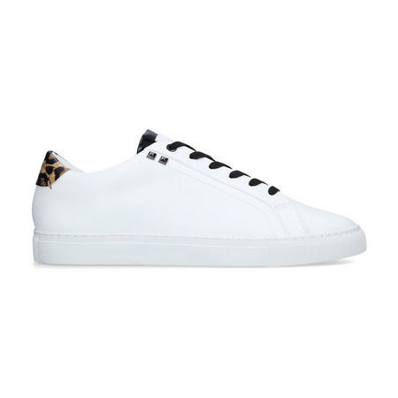 Donnie Stud Leopard Trainer