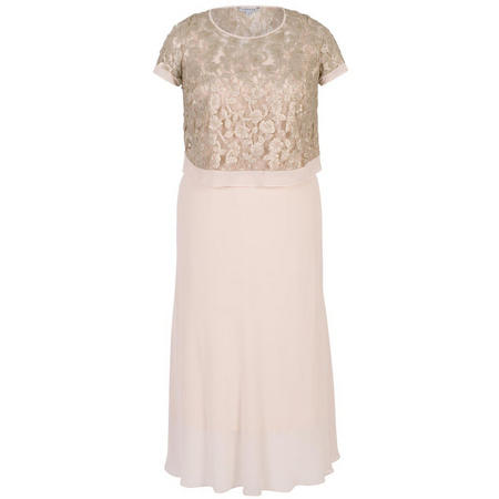 Trellis Appliqué Lace & Chiffon Dress Blush