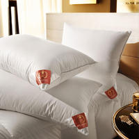 Down Surround Pillow