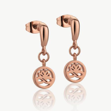 Rose Gold plate Stud Earrings