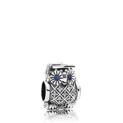 Sterling Silver Graduate Owl Charm