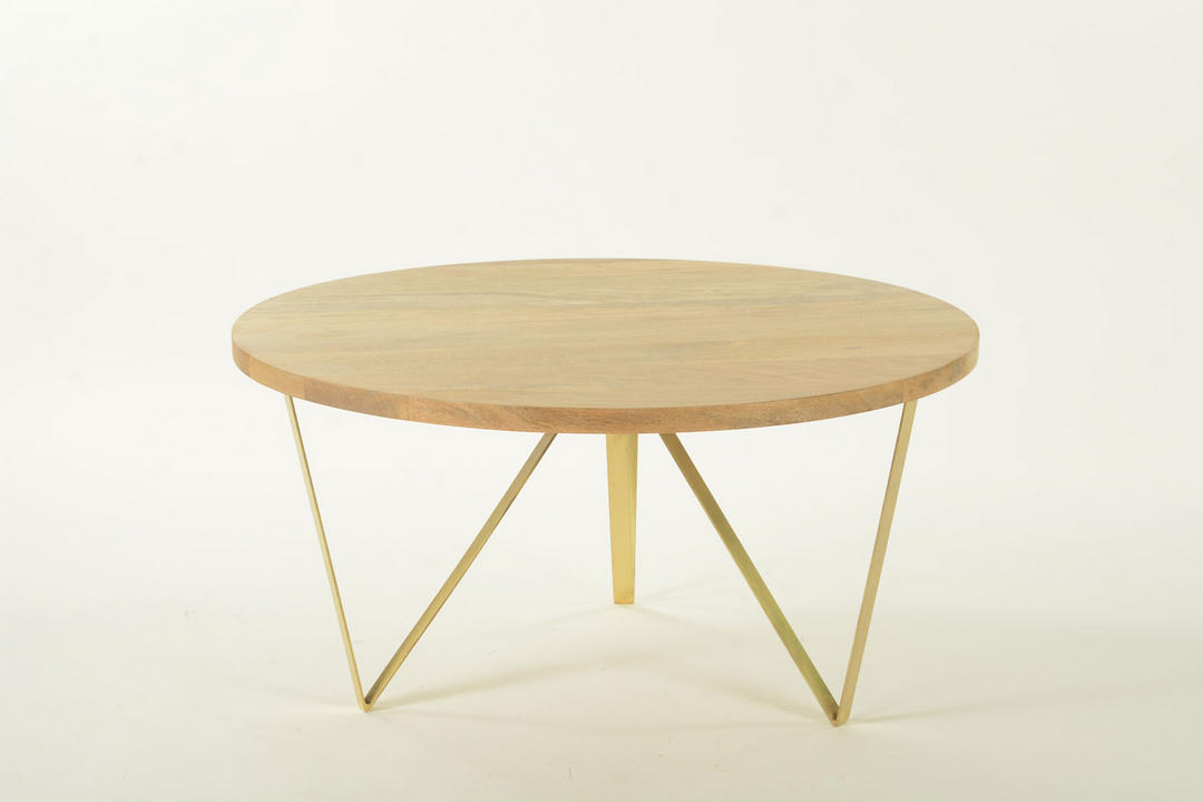 Shilp Coffee Table